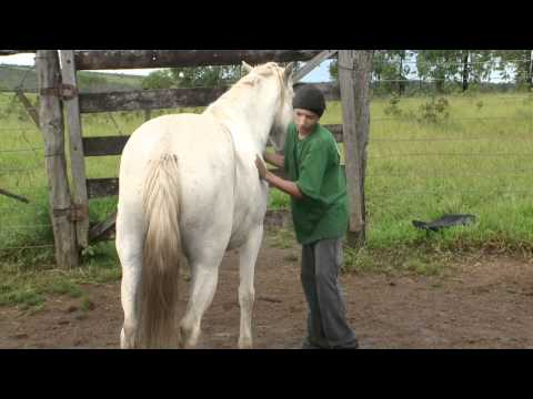 Brazil Project Film - Part 2, March 2010
