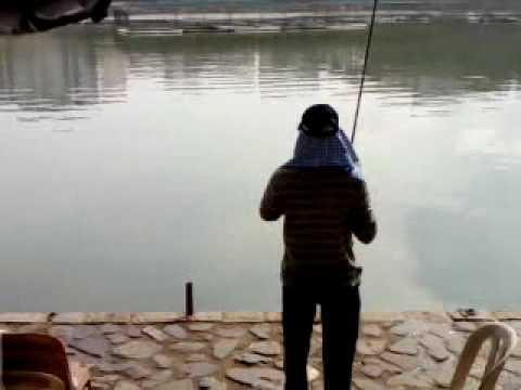 Pond fishing pasir ris.3gp