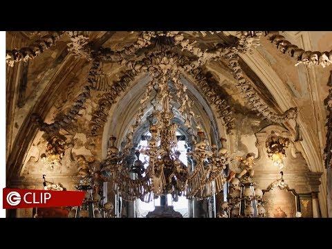Le stanze della meraviglia - Wunderkrammer