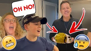 OOPS! We Dropped Dads Birthday Cake + Meet The Family!