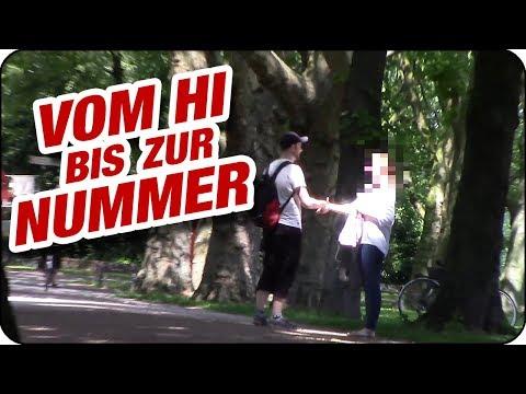 Single sinsheim