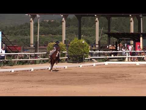 2 Fase Doma Vaquera 170721 Video A