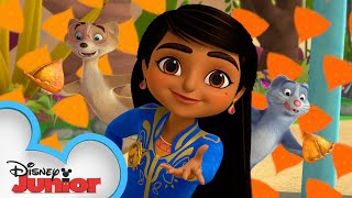 Mystery of The Cunning Chameleon | Mira, Royal Detective | @Disney Junior