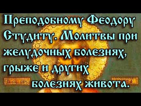 57.Преподобному Феодору Студиту. Молитва от желудочных болей.