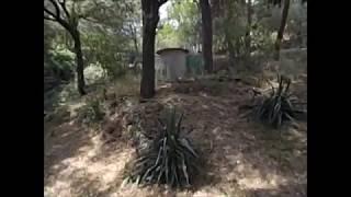 Video del alojamiento Cal Capità
