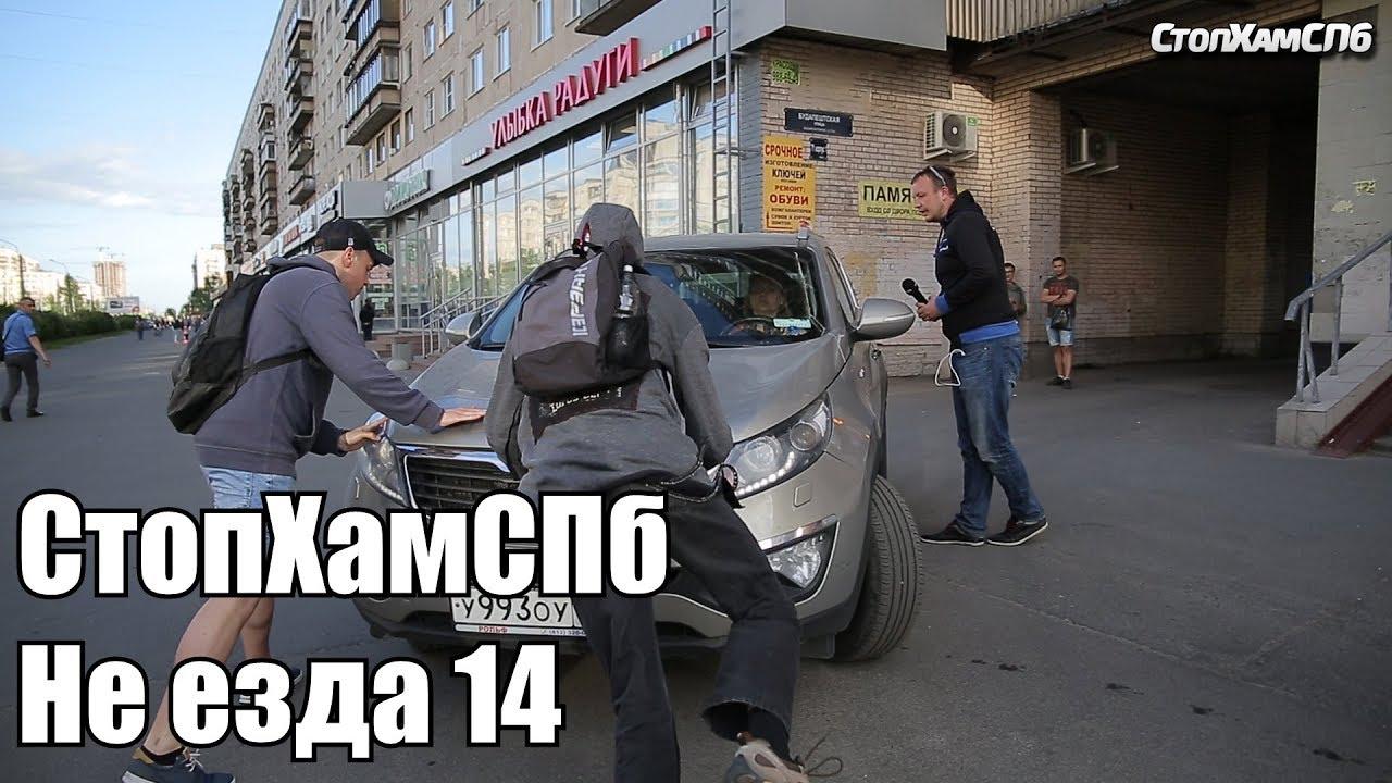 СтопХам Санкт-Петербурга в действии