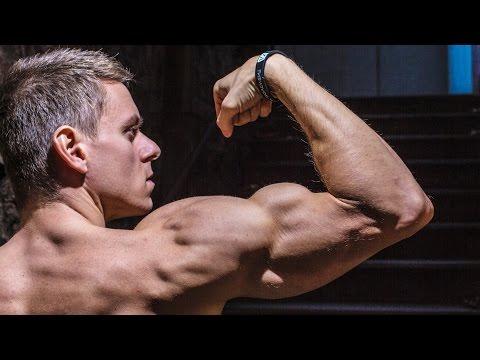 Sintol et le bodybuilding