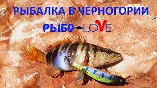 Рыбалка в черногория на море с берега приморский край