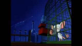 Animaniacs- Pinky and the Brain Intro 2