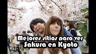 #12 - Mejores sitios para ver Sakura en Kyoto