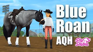 Buying The BLUE ROAN Quarter Horse!