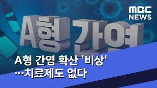 A형 간염 확산 '비상'…치료제도 없다 (2019.04.29/뉴스데스크/MBC)