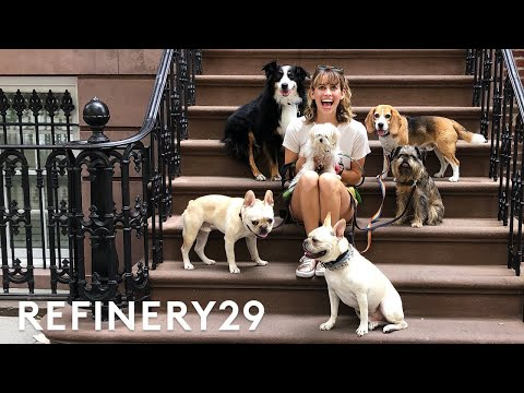 I Got Hired As A Dog Walker | Lucie For Hire | Refinery29