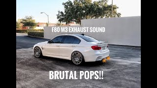 BMW M3 Exhaust Sounds   Start Up, Revs, And Launch Control!!