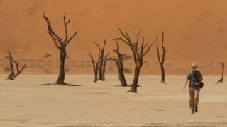 Tourism blooms in desolate desert