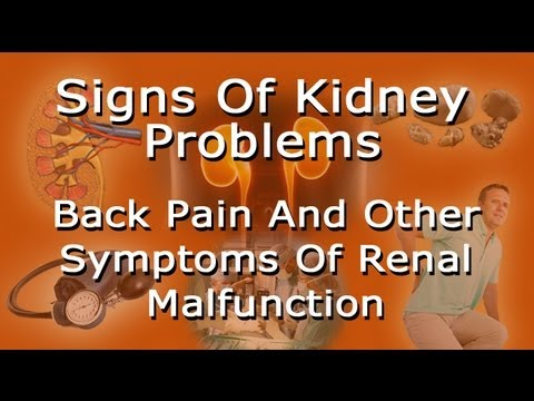 Video Signs Of Kidney Problems - Lower Back Pain And Other Symptoms Of Renal Trouble