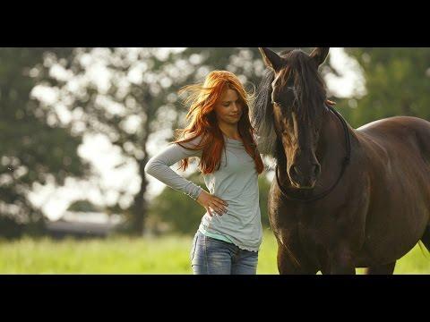 Gdzie Samara kupić konia w patogen