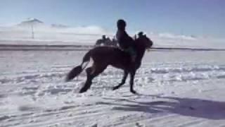 Mongol Huuhed