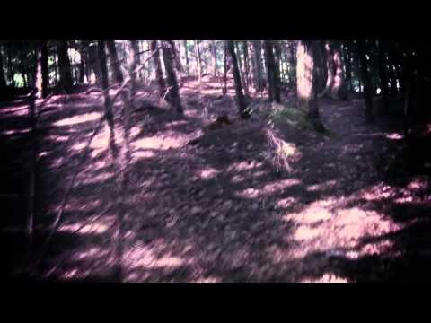 Vidéo de Ann Aguirre