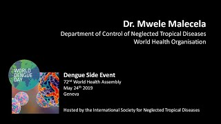 Video: The threat of dengue & WHO's approach