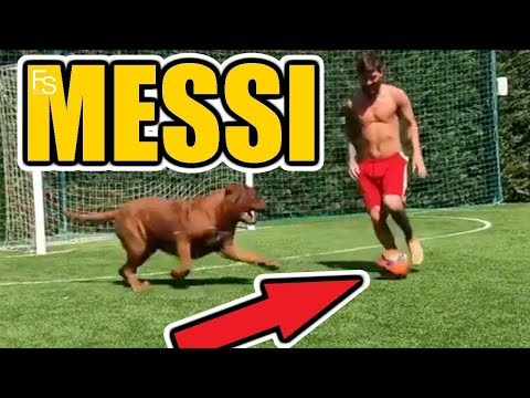 Lionel Messi Vs Hulk Dog Football Fight