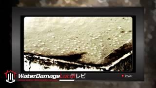 preview picture of video 'Cedar Knolls Flood Restoration'