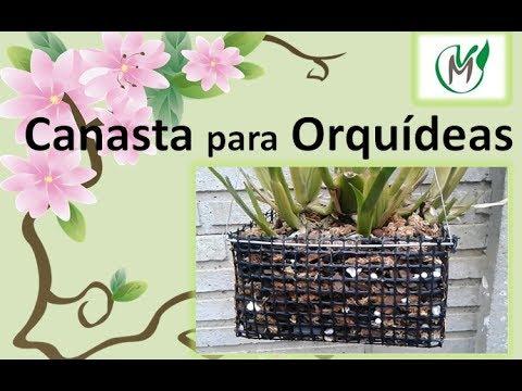 Canasta para Orquídeas - Vivero Marra