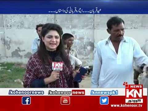 Kohenoor Special 11 August 2019 | Kohenoor News Pakistan