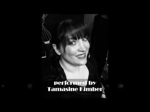 Silver Shoes - Tamasine Kimber