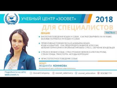 Л. С. Коникова в УЦ «Зоовет» | Поведенческая медицина, ч.4