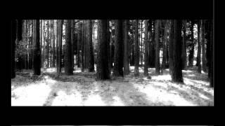 Forest Of Shadows - Open Wound (+ Lyrics)