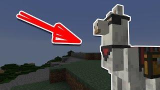 🙀 10 ФАКТОВ, КОТОРЫЕ ВЫ НЕ ЗНАЛИ О ЛАМАХ В MINECRAFT 🙀 ИНТЕРЕСНЫЕ ФАКТЫ О ЛАМАХ [Minecraft факты]