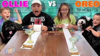 Dont SPILL the WATER 2! Puppy Treats Challenge Edition w/ Ollie & Oreo (FV Family #Shorts)
