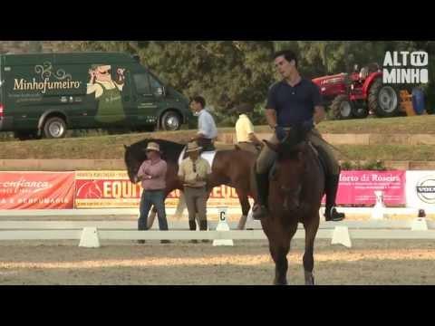 Reportagem do 'Alto Minho TV' sobre a VII Feira do Cavalo de Ponte de Lima