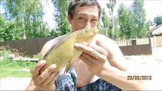 Платная рыбалка в подольске и подольском районе