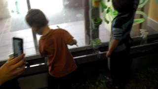 upload_10000004F7F1B3_2012.03.18,16:31:18,673_805C86A5