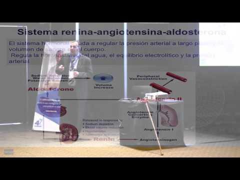 Dispositivo para medir la presión arterial y UA-200
