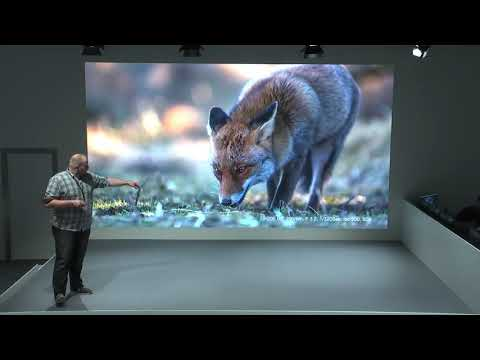 Andreas Hütten – Eine Reise durch die Tier- und Naturfotografie