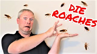 The ONLY Way to Get Rid of ROACHES -- Tenant Left Cockroaches, Landlords Don't Make These Mistakes!!