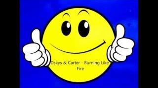 DSkys & Carter - Burning Like Fire