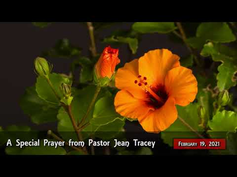 2021-Feb-19 - Pastor Jean Tracey Prayer