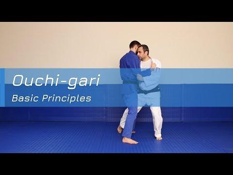 Ouchi-gari - Basic principles