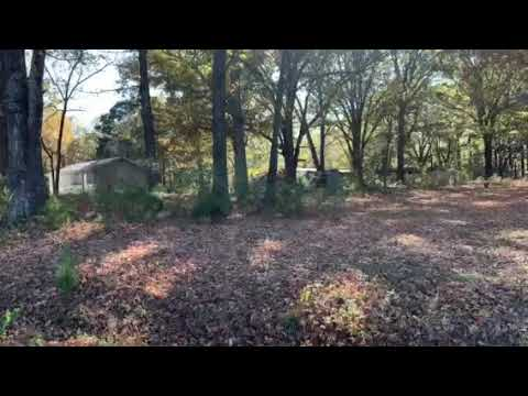 Video Of Teckville Concession, MS
