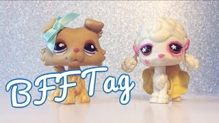 Best Friend Tag! MajesticPets