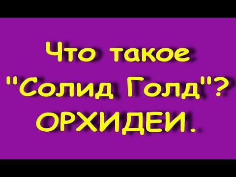"""Что такое """"СОЛИД ГОЛД""""?Орхидеи """"Solid Gold""""."""