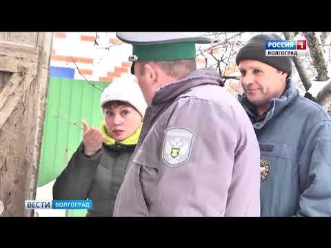 Управлением Россельхознадзора проведен эпизоотический мониторинг в Волгоградской области