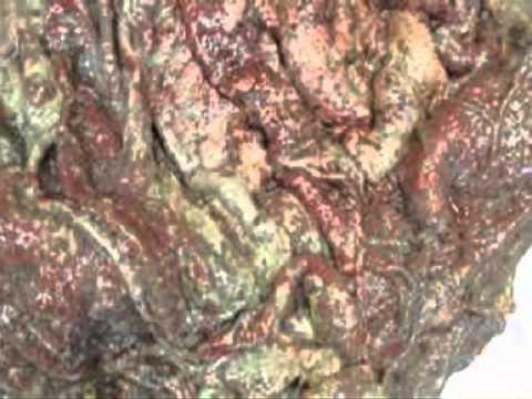Palatandaan ng parasites sa digestive tract