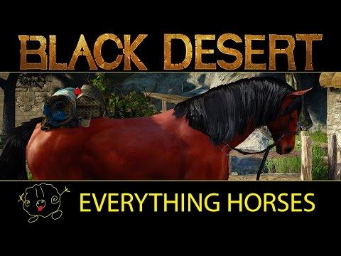 [Black Desert Online] Guide: Everything Horses