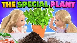 Barbie - The Twin's Special Plant | Ep.308