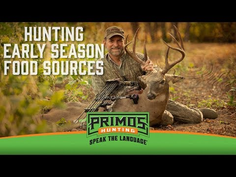 How to Hunt Early Season Food Sources video thumbnail